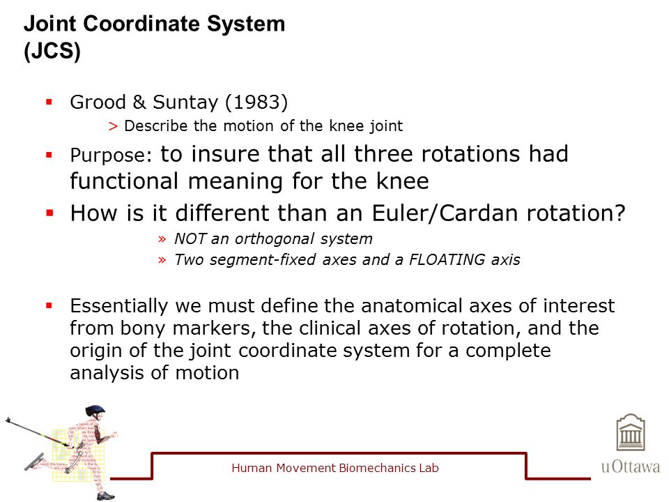 Joint Coordinate System (JCS)