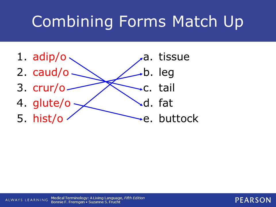 Combining Forms Match Up
