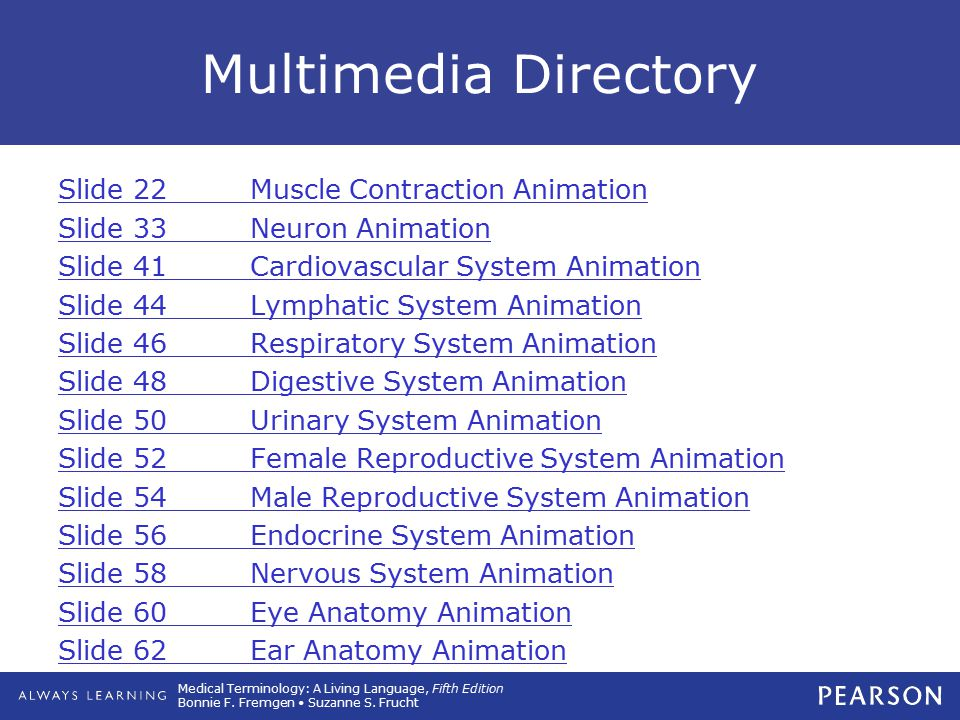 Multimedia Directory Slide 22 Muscle Contraction Animation