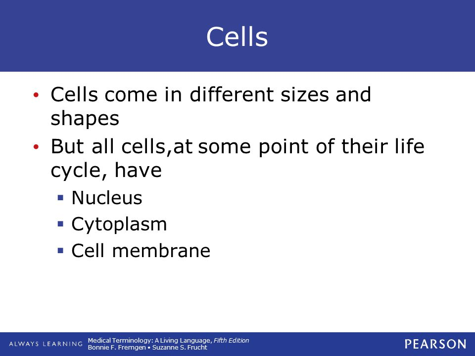 Cells Cells come in different sizes and shapes