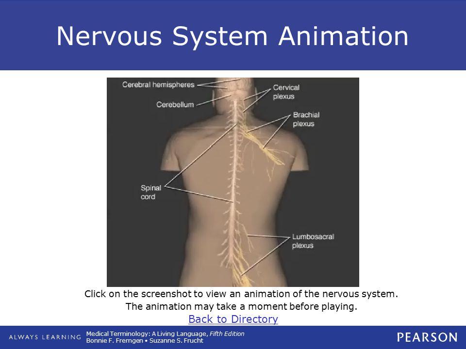Nervous System Animation