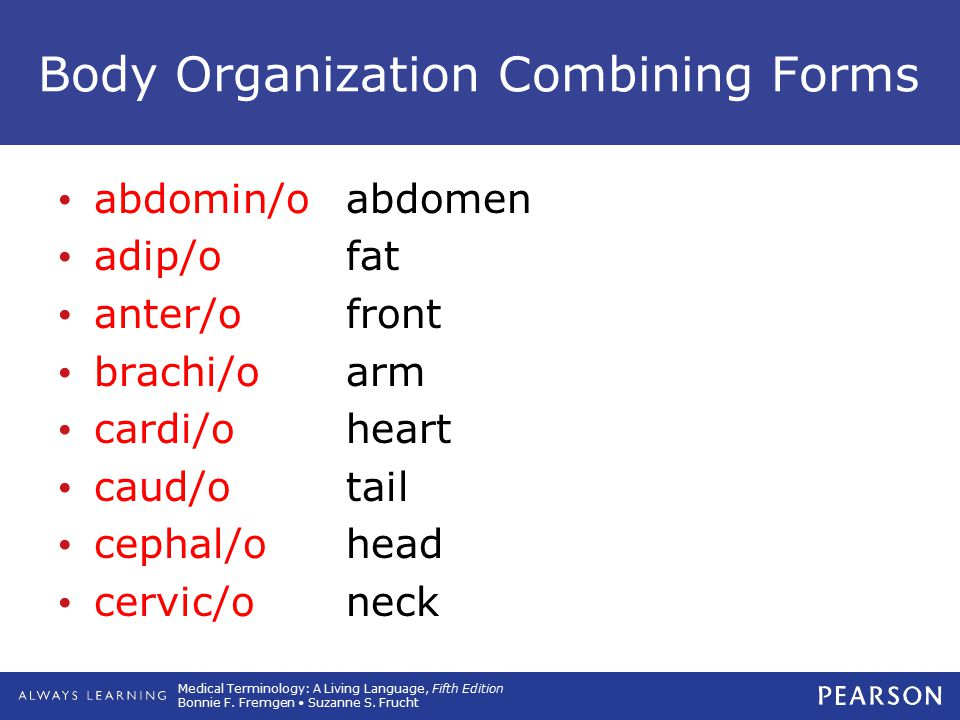 Body Organization Combining Forms