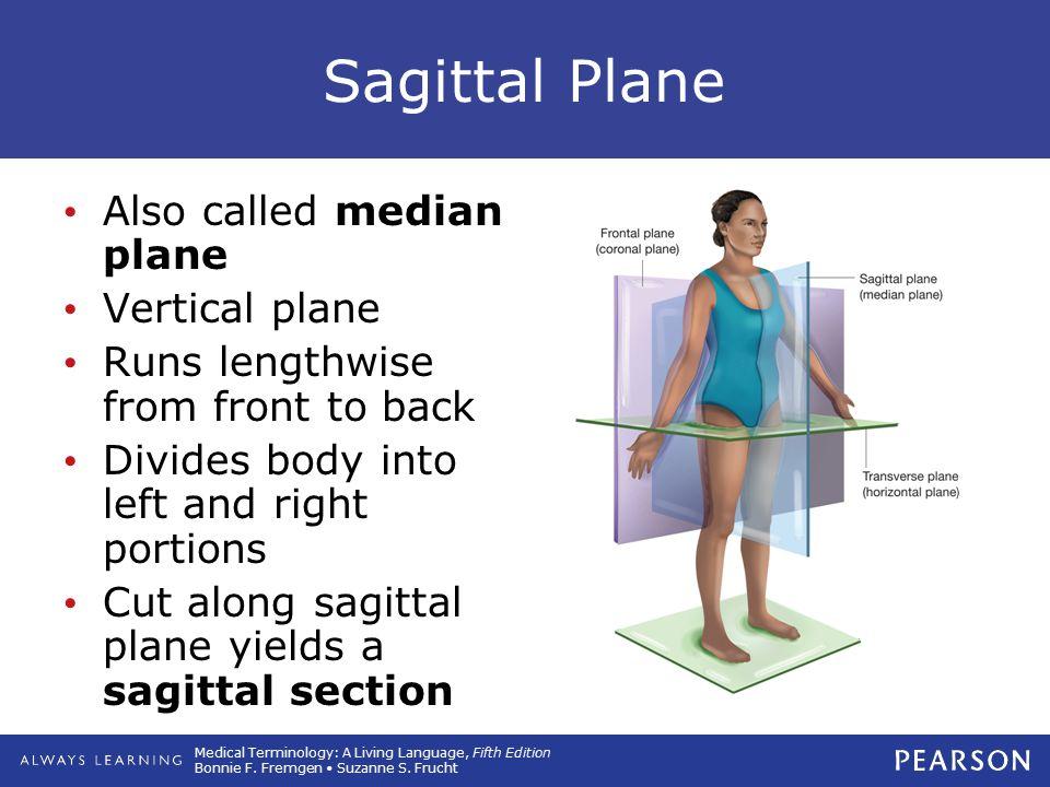Sagittal Plane Also called median plane Vertical plane