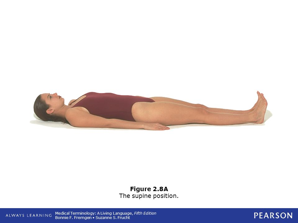 Figure 2.8A The supine position.