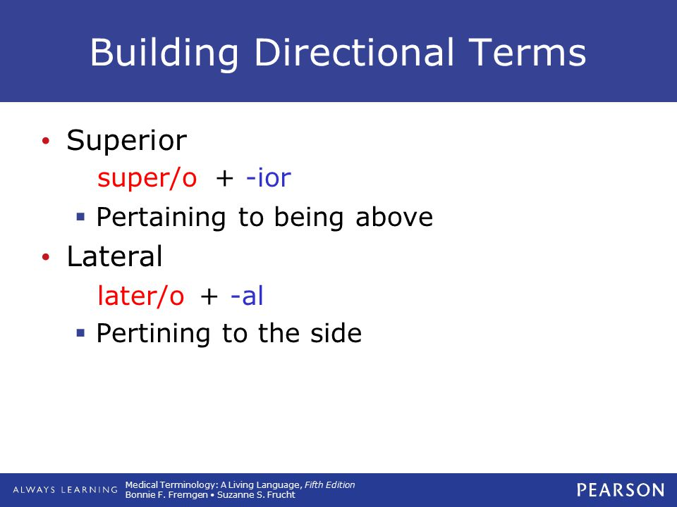 Building Directional Terms