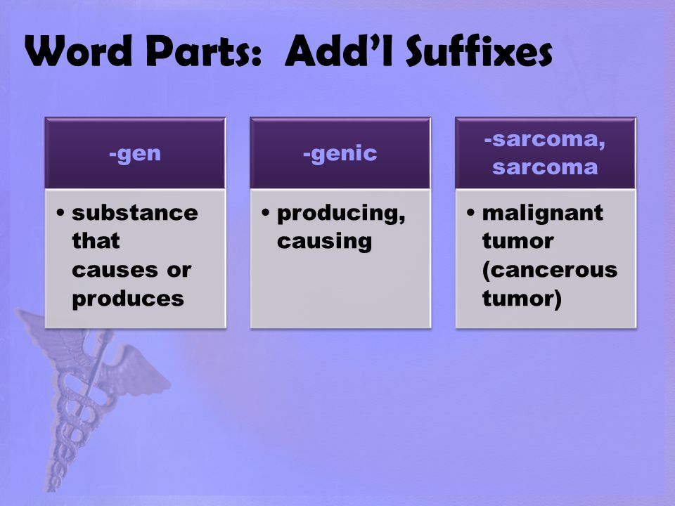 Word Parts: Add'l Suffixes