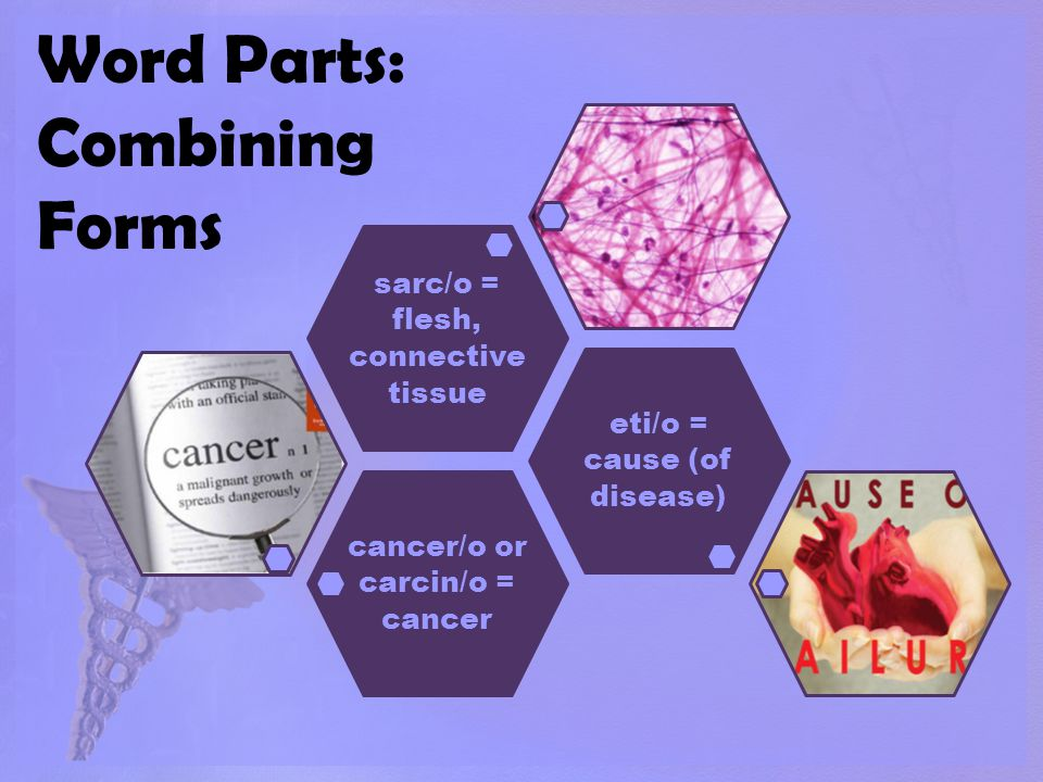 Word Parts: Combining Forms