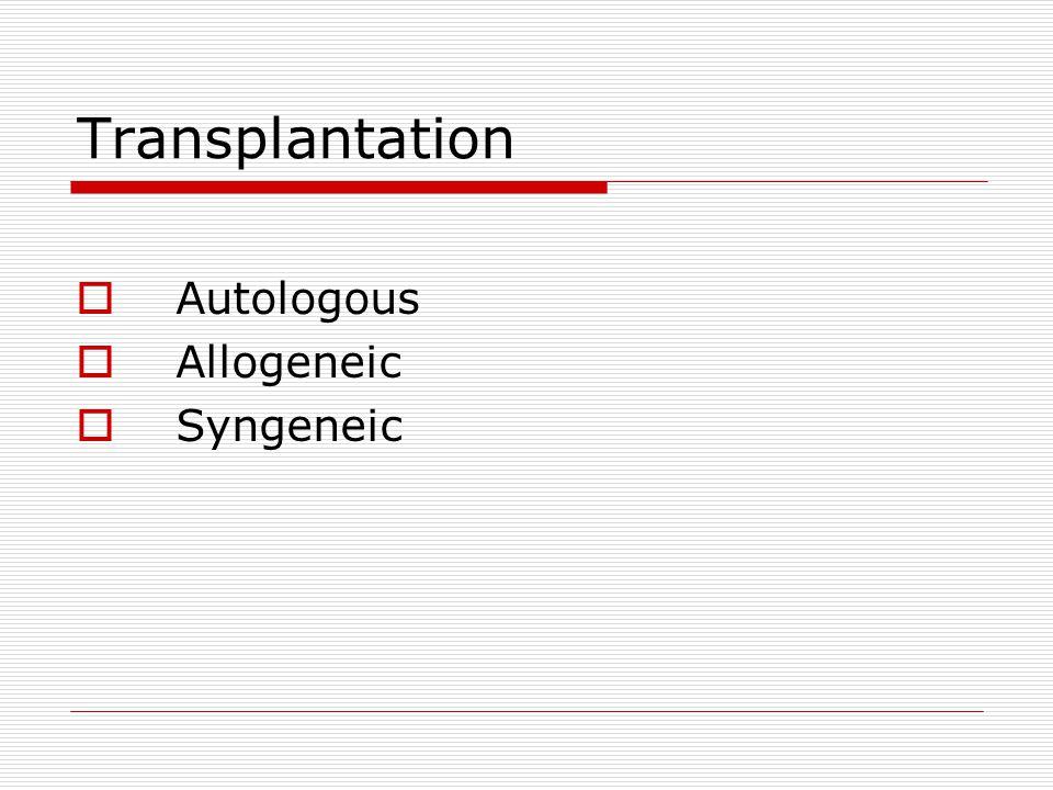 Transplantation Autologous Allogeneic Syngeneic