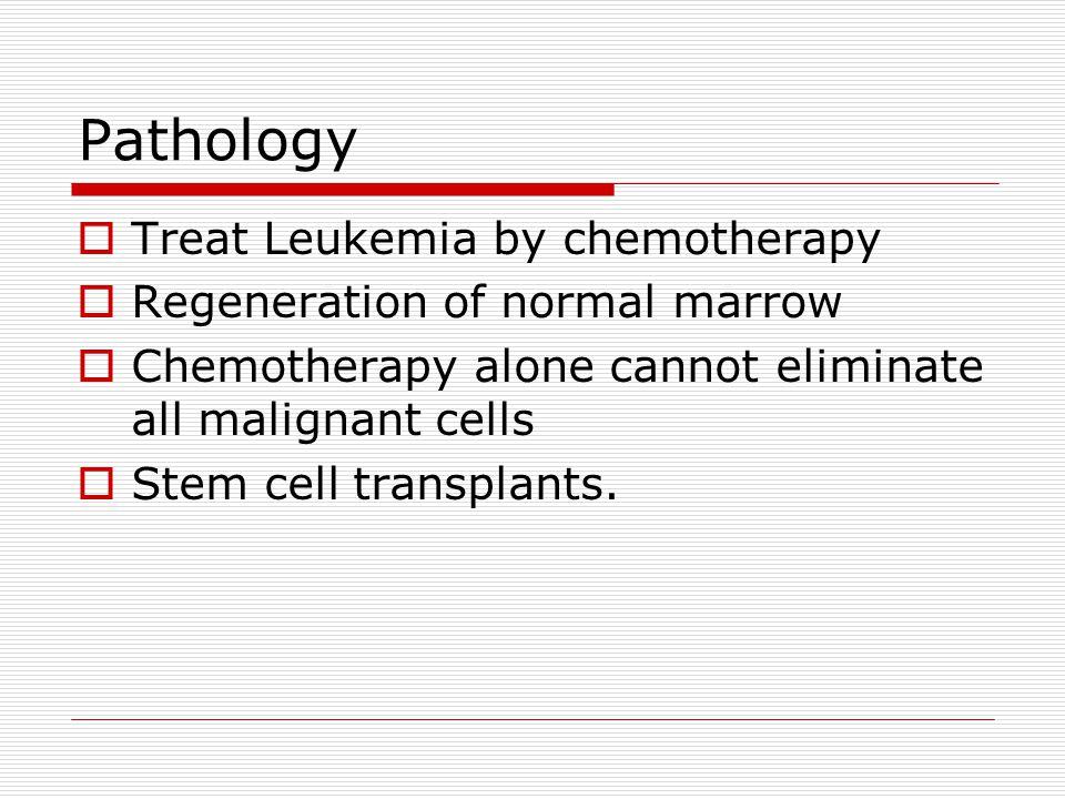 Pathology Treat Leukemia by chemotherapy Regeneration of normal marrow