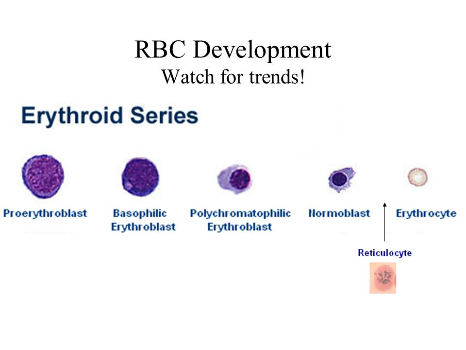RBC Development Watch for trends!