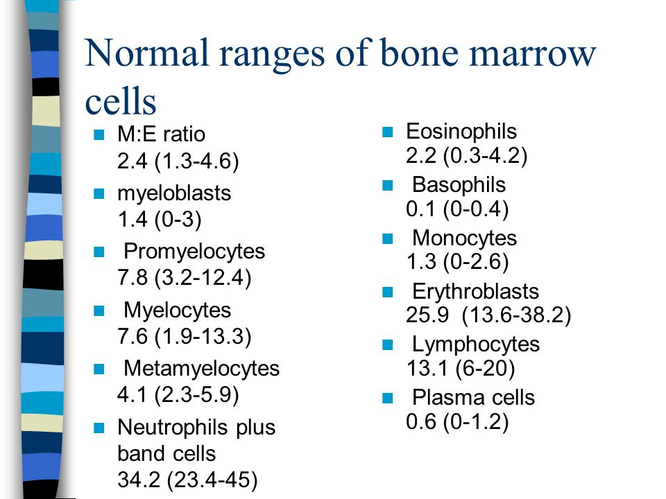 Normal ranges of bone marrow cells