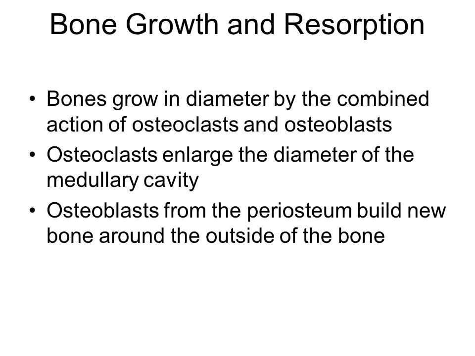 Bone Growth and Resorption