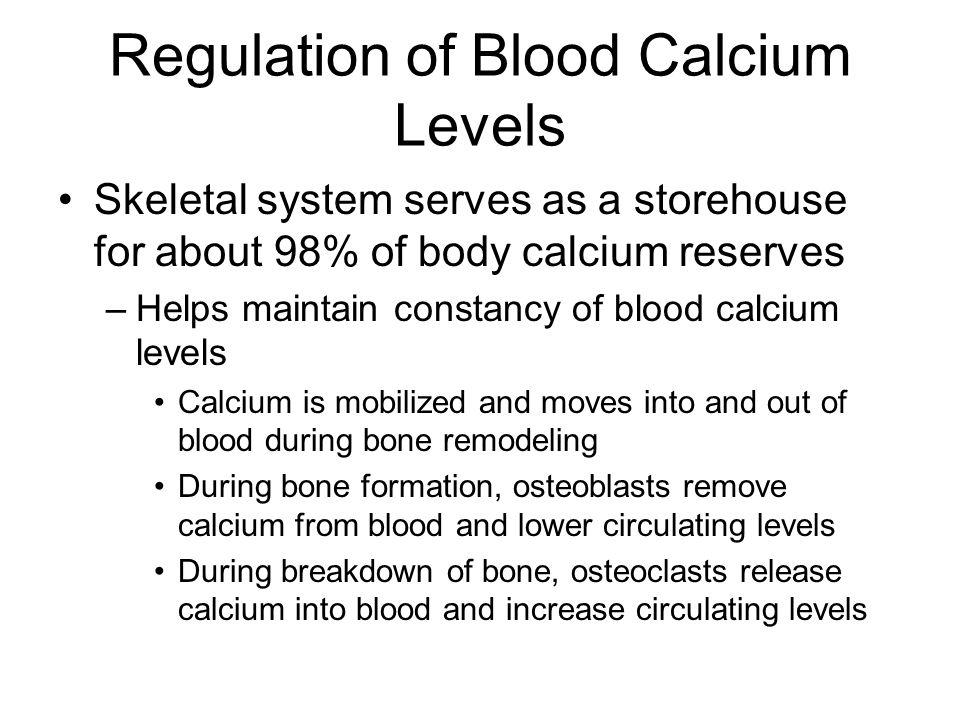 Regulation of Blood Calcium Levels