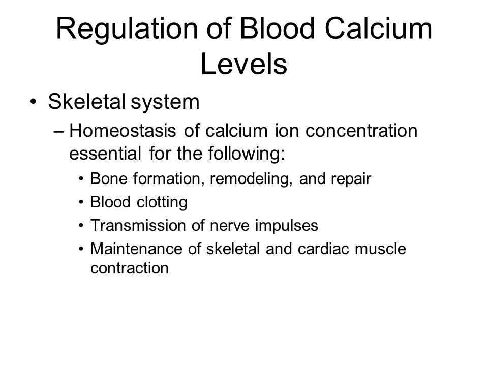 Regulation of Blood Calcium Levels