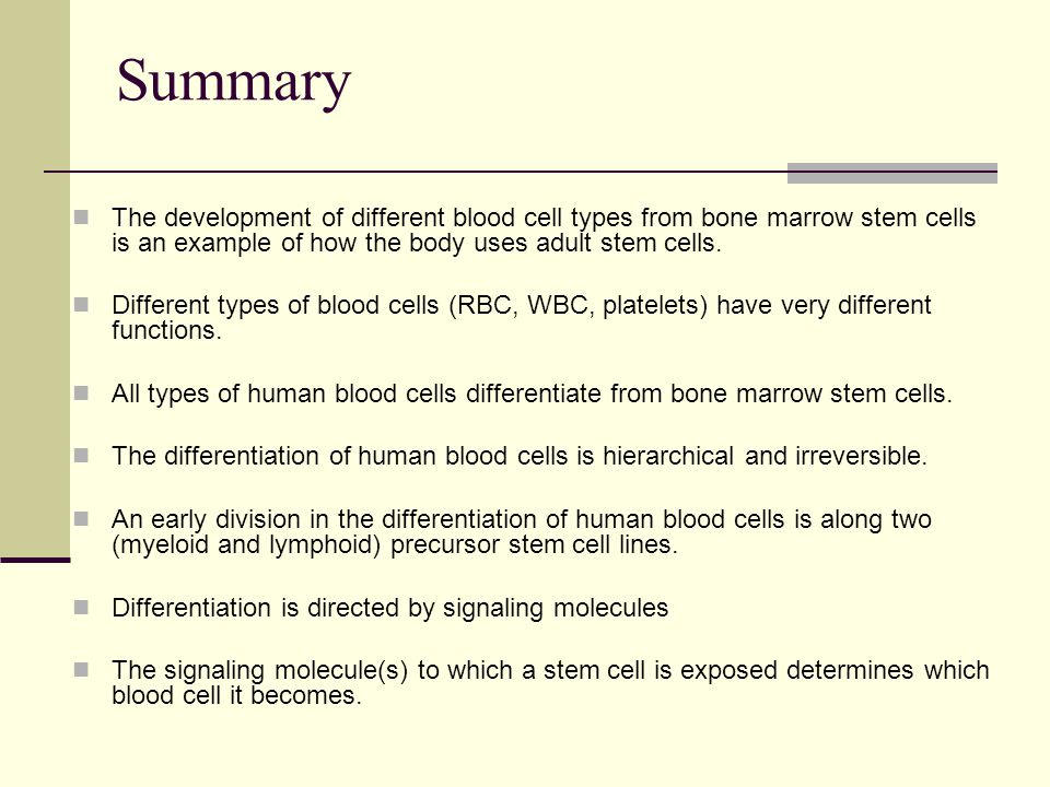 Summary The development of different blood cell types from bone marrow stem cells is an example of how the body uses adult stem cells.