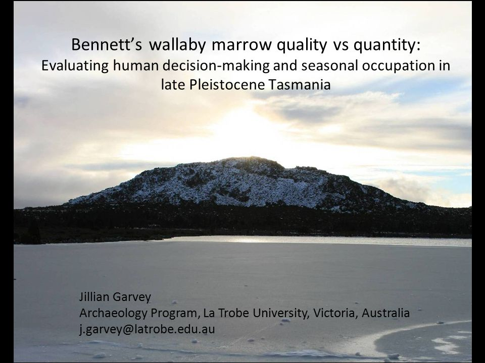 Bennett's wallaby marrow quality vs quantity: Evaluating human decision-making and seasonal occupation in late Pleistocene Tasmania