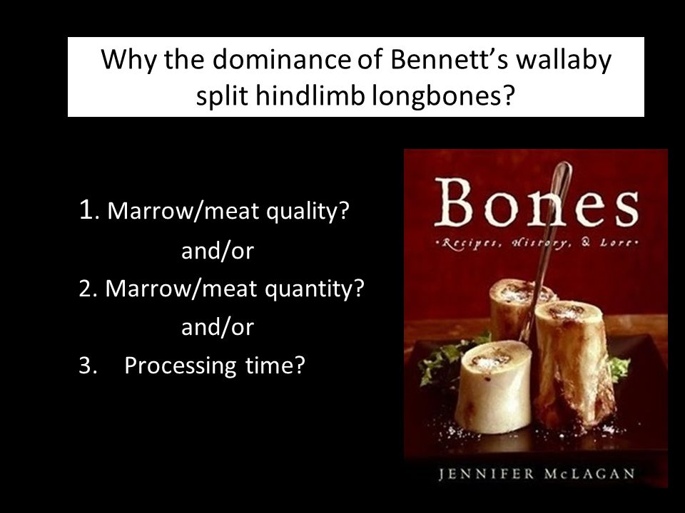 Why the dominance of Bennett's wallaby split hindlimb longbones