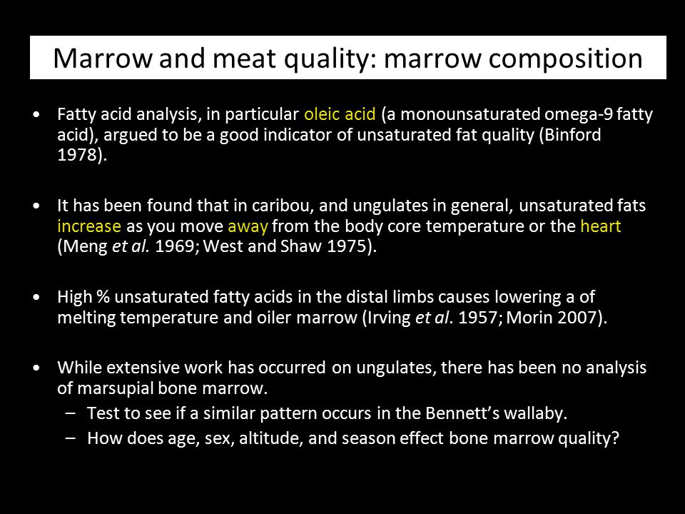 Marrow and meat quality: marrow composition