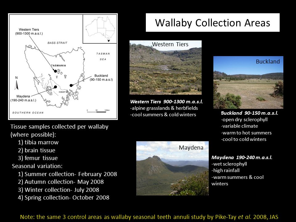 Wallaby Collection Areas