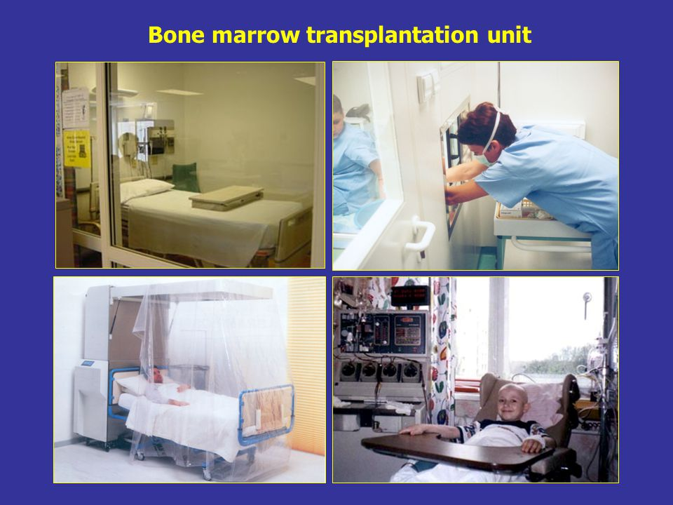 Bone marrow transplantation unit