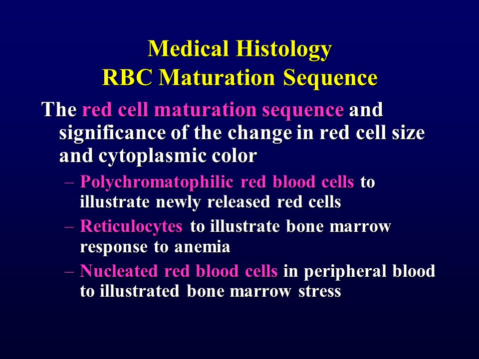 Medical Histology RBC Maturation Sequence