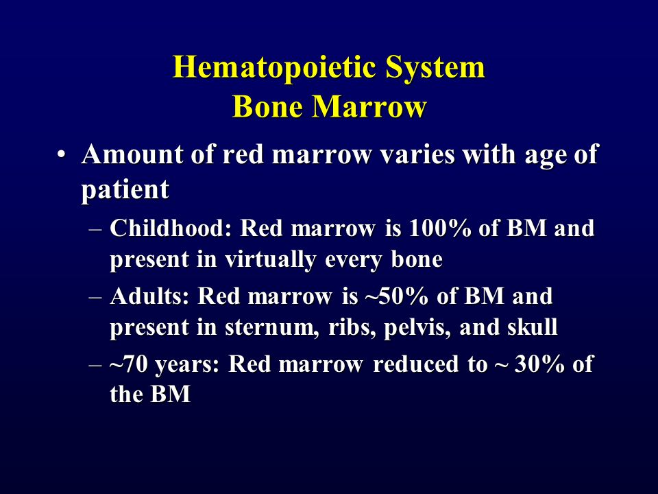 Hematopoietic System Bone Marrow