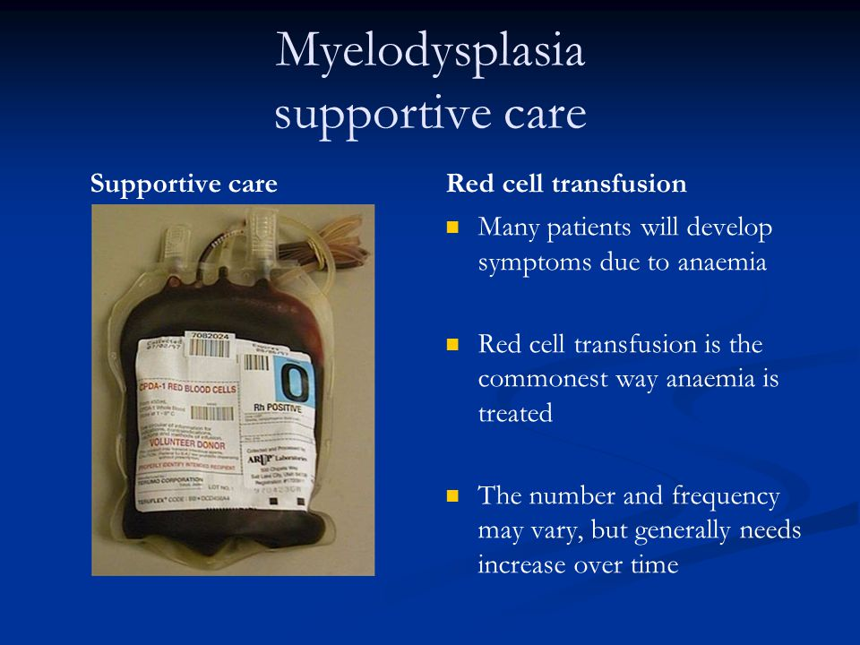 Myelodysplasia supportive care