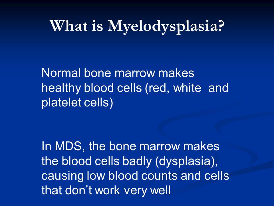 What is Myelodysplasia