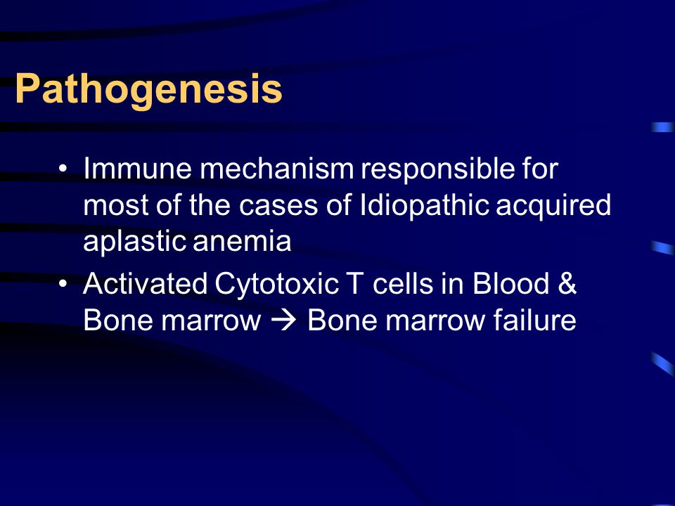 Pathogenesis Immune mechanism responsible for most of the cases of Idiopathic acquired aplastic anemia.