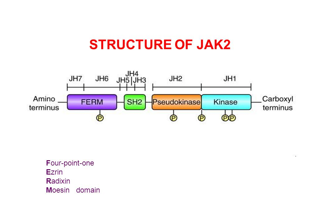 3 major pathways in signal transduction