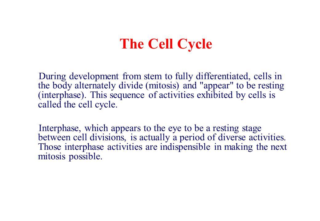 THROMBOPOIETIN ACTIVITY lineage dominant factor megakaryocyte