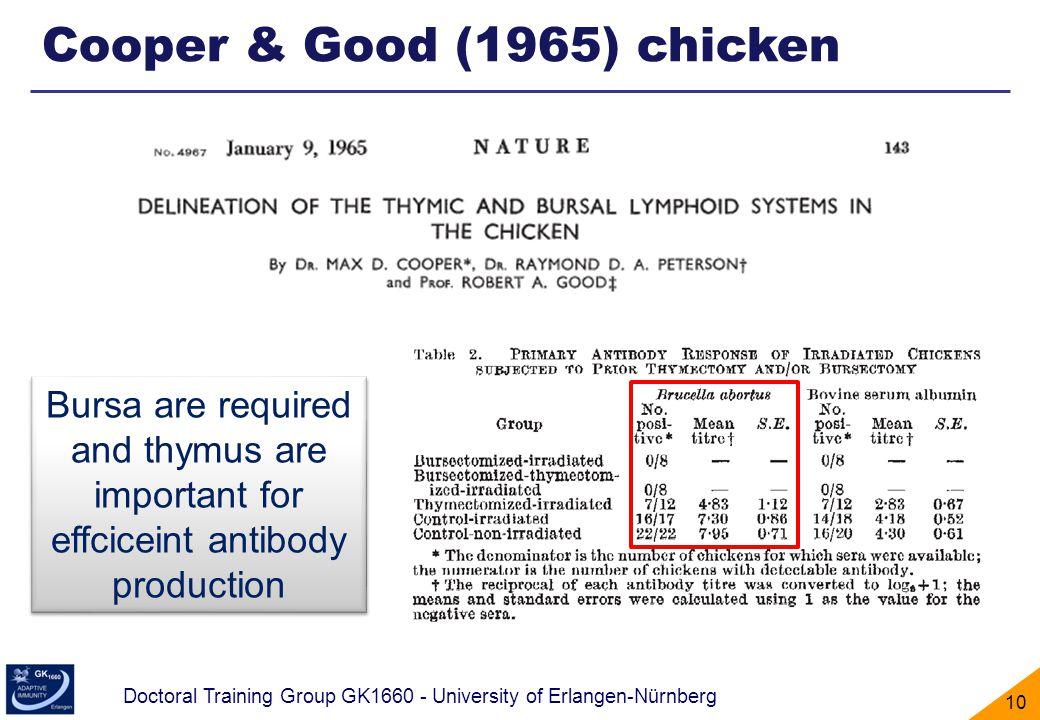 Cooper & Good (1965) chicken