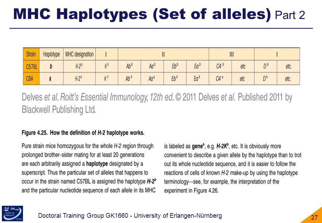MHC Haplotypes (Set of alleles) Part 2