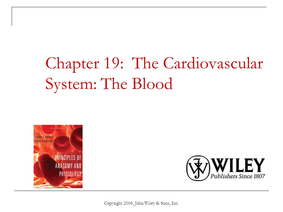 Chapter 19: The Cardiovascular System: The Blood - ppt video online ...