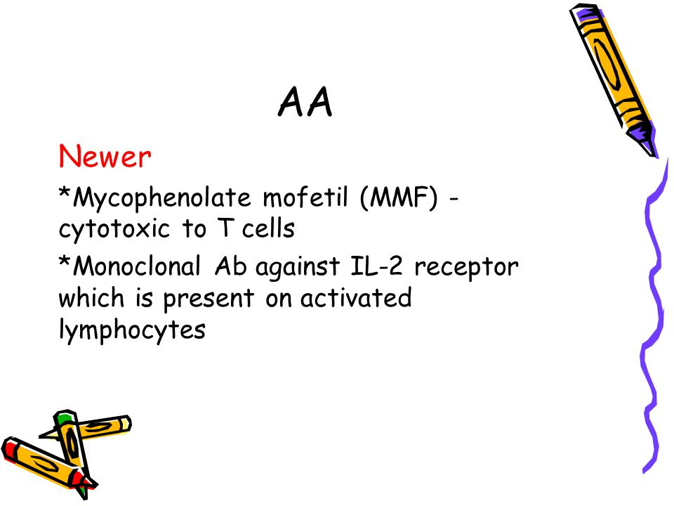 AA Newer *Mycophenolate mofetil (MMF) - cytotoxic to T cells