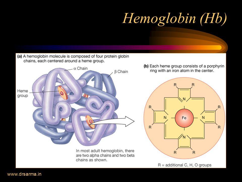 Hemoglobin (Hb) www.drsarma.in