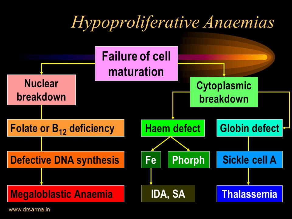 Hypoproliferative Anaemias