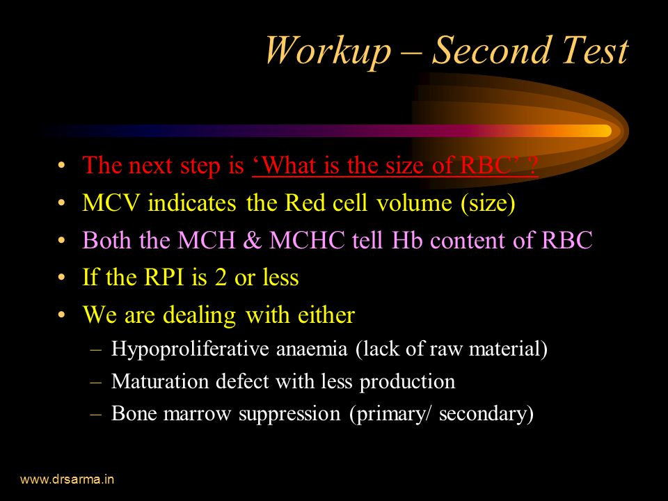Workup – Second Test The next step is 'What is the size of RBC'