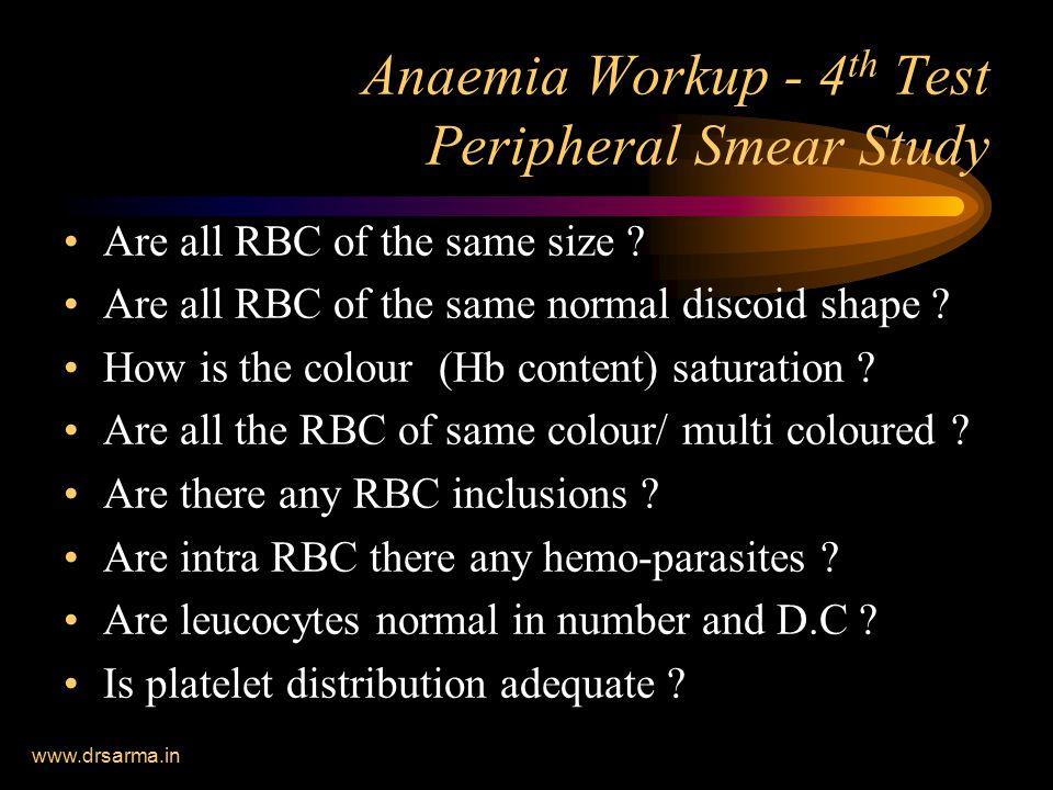 Anaemia Workup - 4th Test Peripheral Smear Study