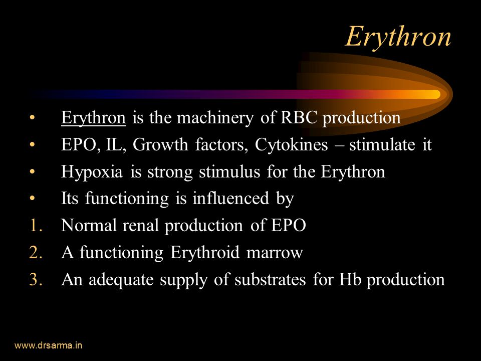 Erythron Erythron is the machinery of RBC production