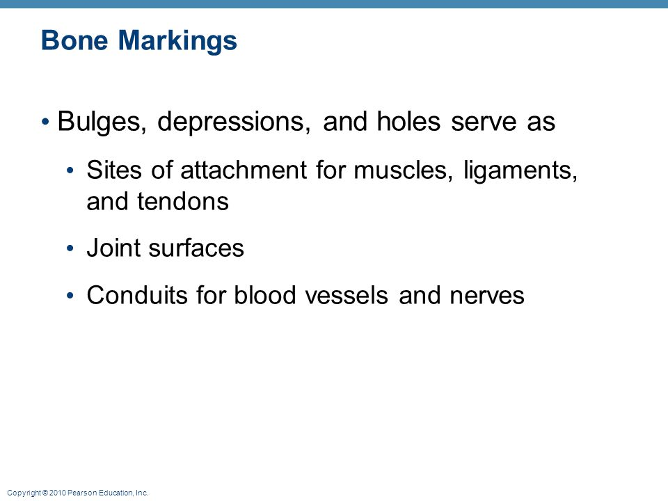 Bulges, depressions, and holes serve as