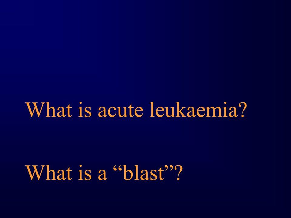 What is acute leukaemia