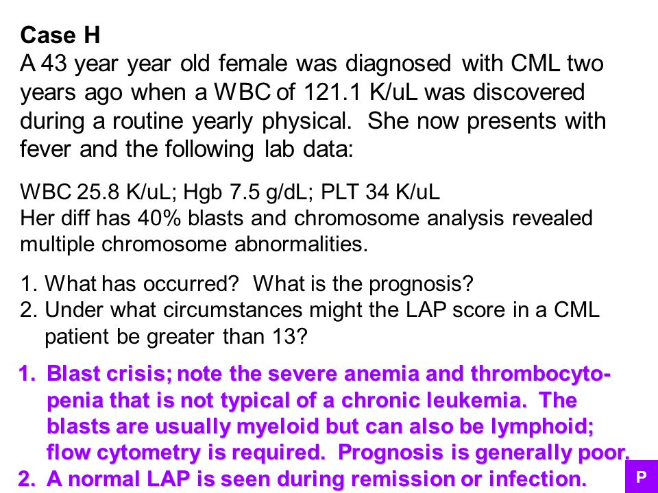 A 43 year year old female was diagnosed with CML two