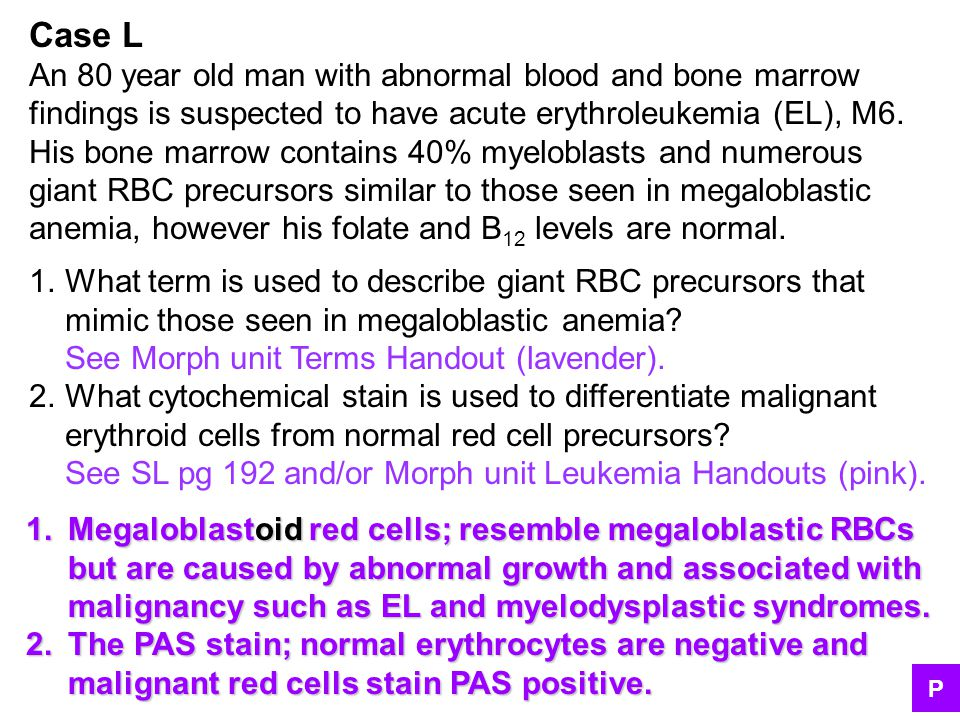 Case L An 80 year old man with abnormal blood and bone marrow