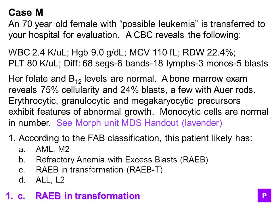 Case M An 70 year old female with possible leukemia is transferred to. your hospital for evaluation. A CBC reveals the following: