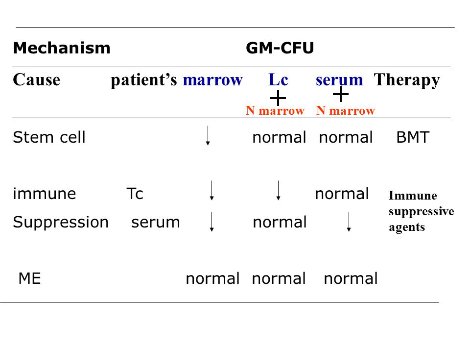 Cause patient's marrow Lc serum Therapy