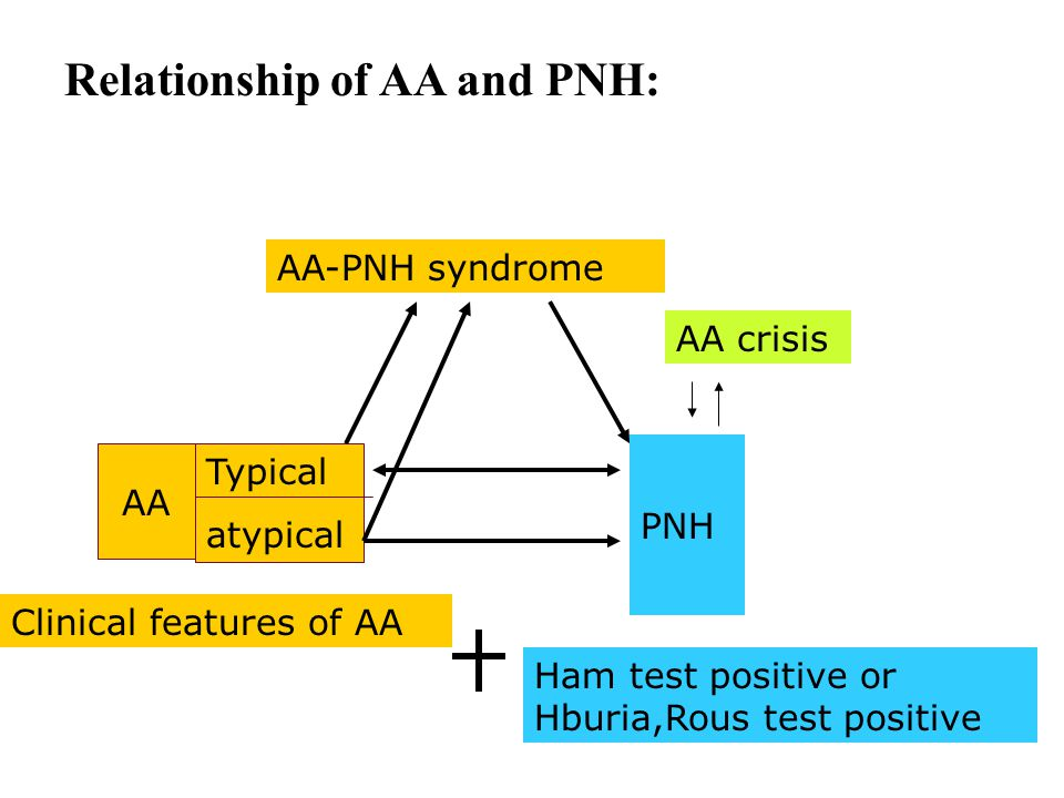 Relationship of AA and PNH: