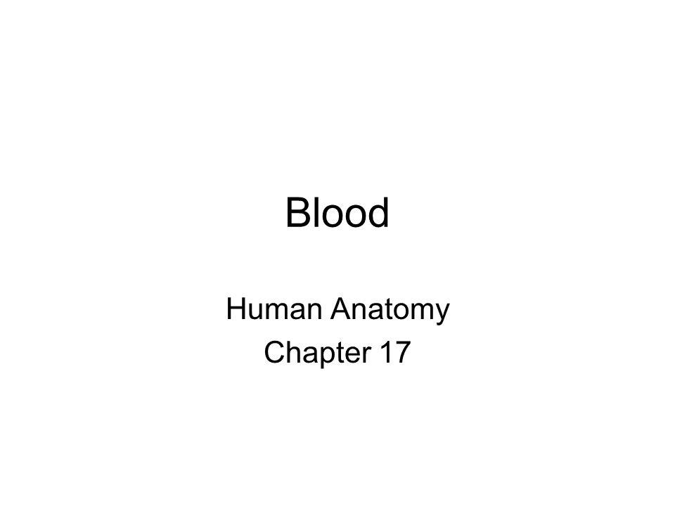 Blood Human Anatomy Chapter 17