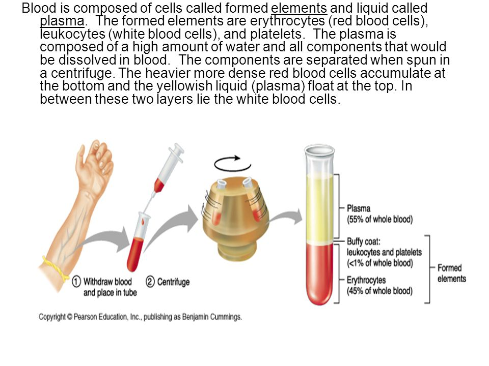 Blood is composed of cells called formed elements and liquid called plasma.