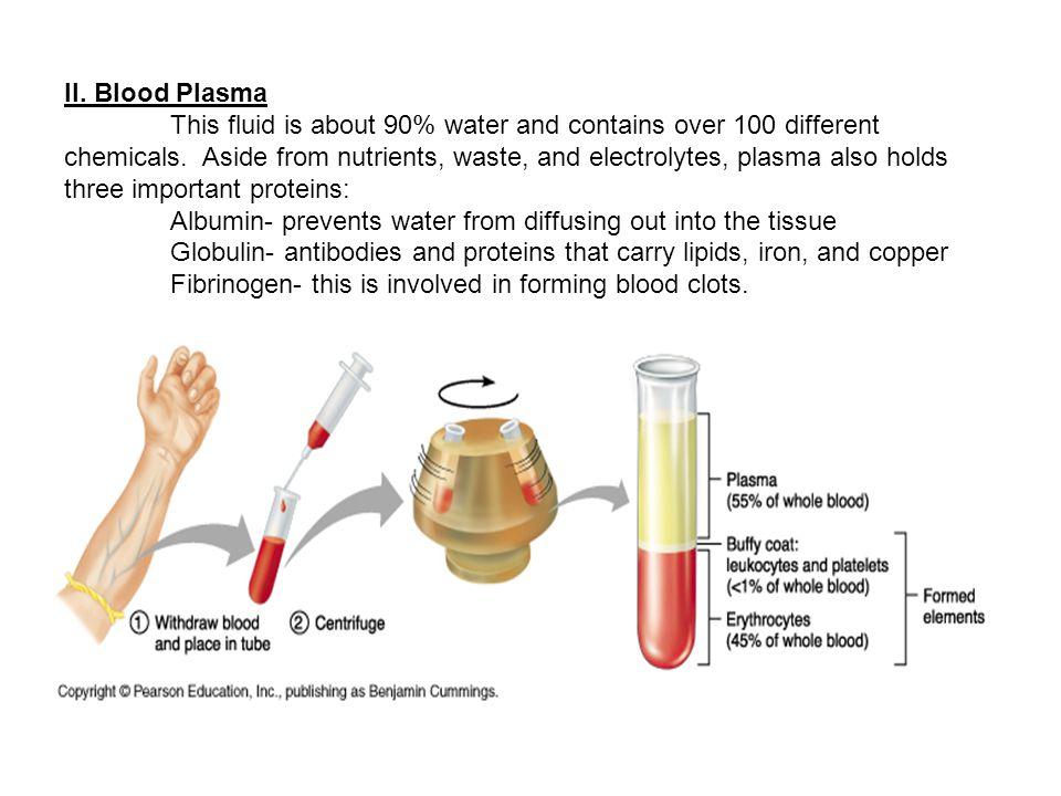 II. Blood Plasma
